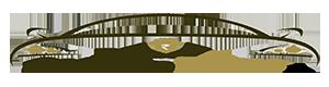 DealerServiceCenter.in Logo